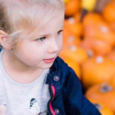 Wunderschöne Kürbislandschaften auf den Kinderfotos in der Gartenschau
